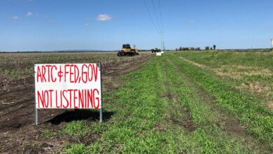 Photo of Farmers' plans on hold while awaiting inland rail review of Darling Downs route
