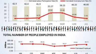 Photo of How the COVID-19 outbreak has affected the joblessness rate in India –