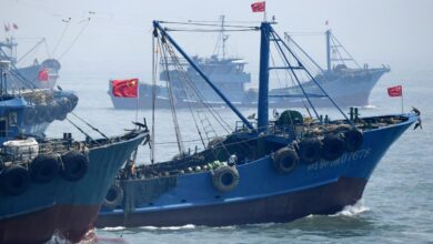 Photo of Chinese fishing boats break UN sanctions in North Korean waters: study