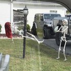 Photo of This is the first time I've seen this type of Halloween decoration