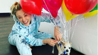 Photo of The Big Bang Theory star Kaley Cuoco marks end of quarantine by tying balloons to dog Dumpy in fun photo