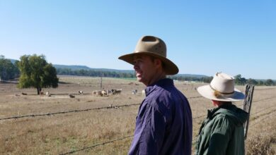 Photo of Farmers call for bipartisan support to get weirs built in the Burnett