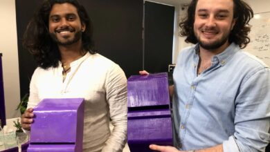 Photo of Engineers brought together by Mars are now using technology to save Australia's bees from devastating varroa mites