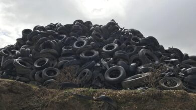 Photo of The Aussie innovator recycling dumped car tyres for farms