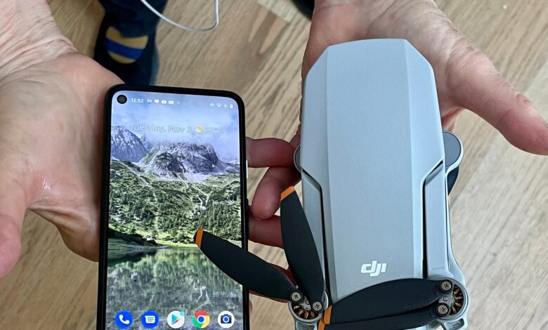 DJI's new Mini II drone is light and cute. We took it for a test flight, and here's what we learned.