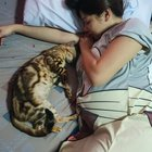 Photo of My cat and I, both pregnant