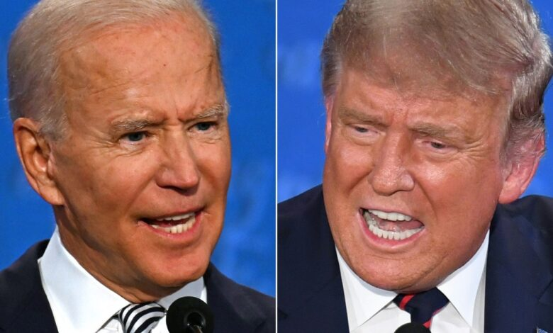 US election: what were the biggest issues for voters in Trump vs. Biden?