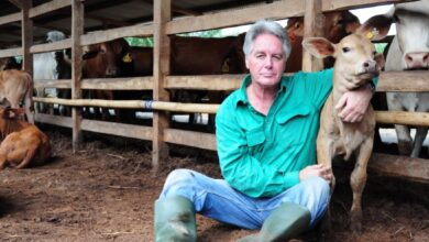 Photo of Vet Ross Ainsworth spends six months on live export ships or in quarantine due to COVID rules
