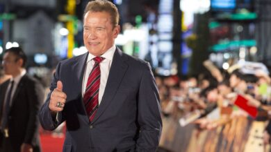 Photo of Entertainment Arnold Schwarzenegger lines up first ever regular TV role in Netflix spy series