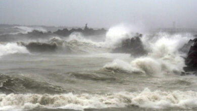 Photo of Cyclone Nivar gradually intensifying, could cause damage to homes, uproot trees: IMD