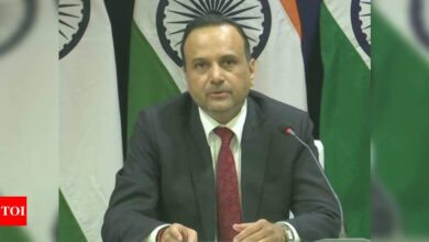 Photo of We pursue an independent foreign policy: India on Russian foreign minister's comments