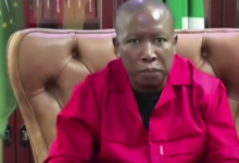 Photo of Malema says SA should collaborate with Russia, Cuba on vaccine