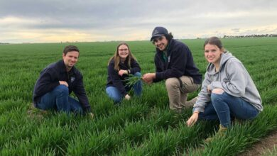 Photo of Uni students flock to agriculture as COVID and lower fees drive demand