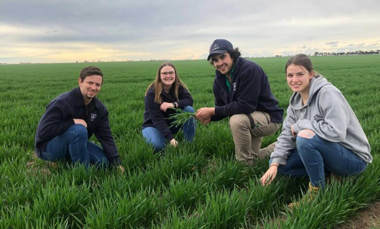 Uni students flock to agriculture as COVID and lower fees drive demand