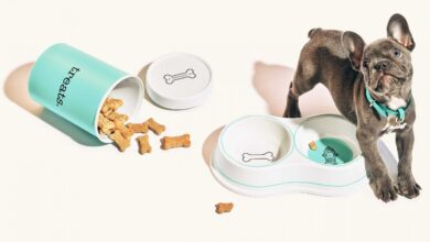 Photo of Pets: The New Code To China's Luxury Fashion Consumers